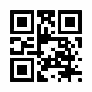 websiteQRCode noFrame